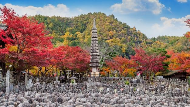Świątynia adashinonenbutsuji jesienią, kioto w japonii.
