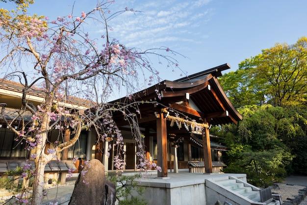 Świątynia atsuta jingu z sakurą w nagoi