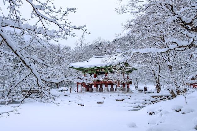 Świątynia baekyangsa i padający śnieg, góra naejangsan zimą ze śniegiem, słynna góra w korei. zimowy krajobraz
