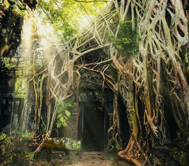 Świątynia w angkor thom