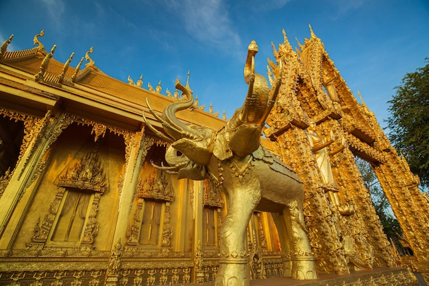 Świątynia złoty kolor piękna sztuka słonia i architektura w wat paknam jolo, bangkhla, prowincja chachoengsao, tajlandia