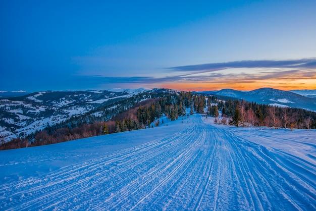 Świerkowy zimowy las z widokiem na góry