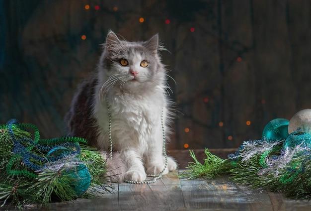 Święta i uroczystości ze zwierzętami. zwierzak w pokoju z choinką