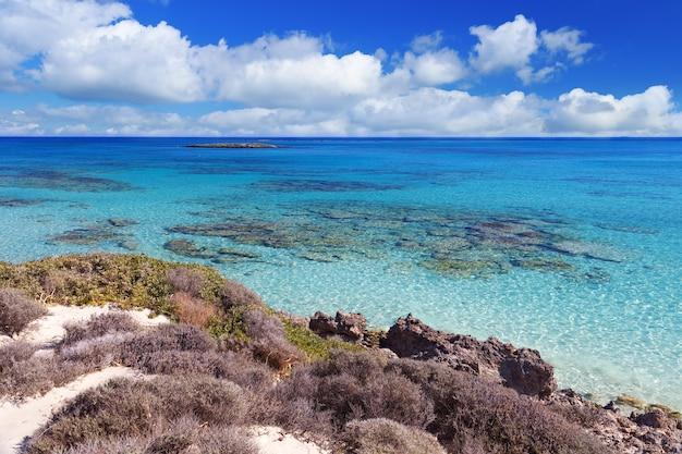 Świetna plaża elafonisi, niebo i zobaczyć