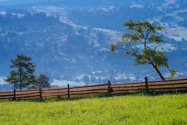 Świetne letnie pastwiska w górach