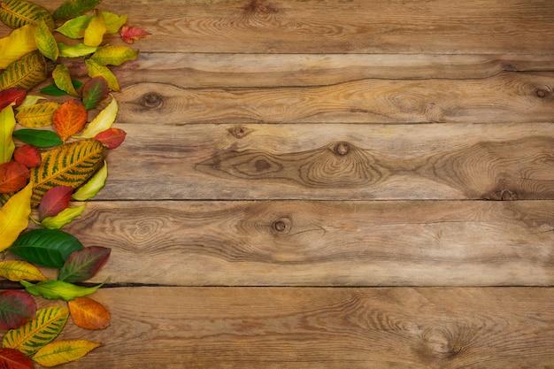 Święto dziękczynienia lub jesień z czerwonymi, żółtymi i zielonymi liśćmi, kopia