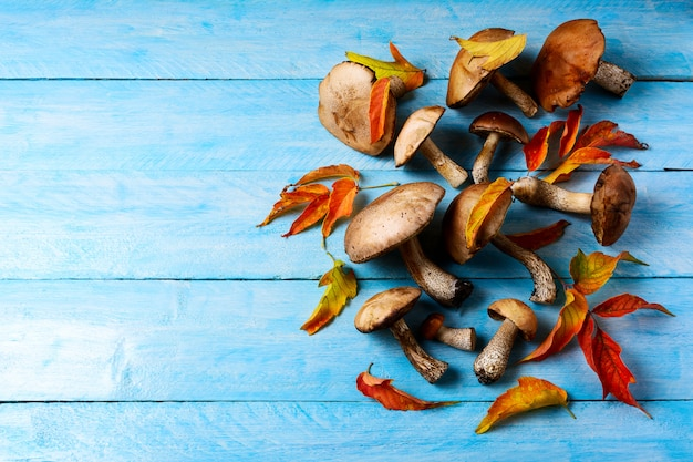 Święto dziękczynienia lub jesień z grzybami leśnymi i opadającymi liśćmi