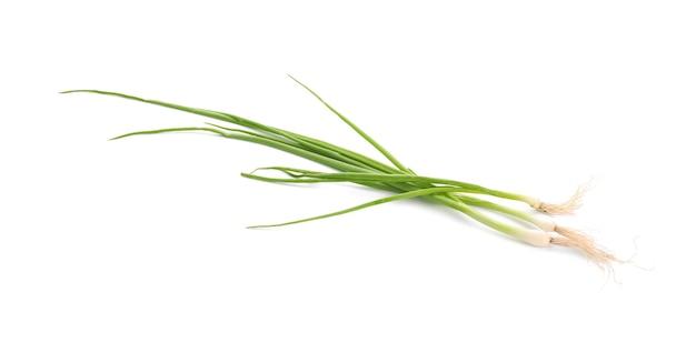 Świeża aromatyczna zielona cebula na białej powierzchni