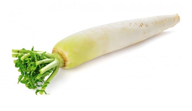 Świeża biała rzodkiew odizolowywająca na bielu