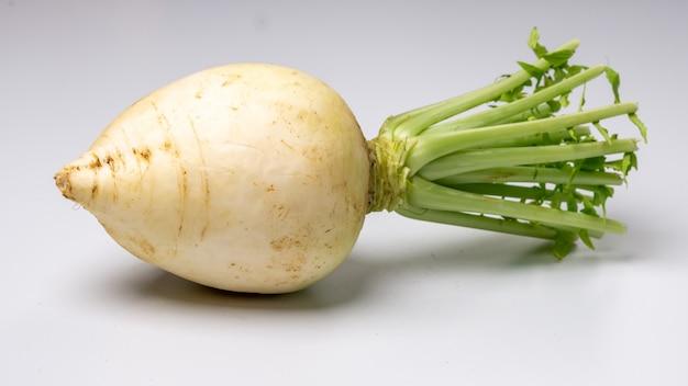 Świeża biała rzodkiew