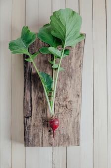 Świeża czerwona rzodkiewka, zdjęta z ziemi, na drewnianej przestrzeni