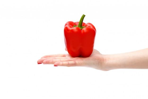 Świeża czerwona słodka papryka lub papryka w dłoni womam