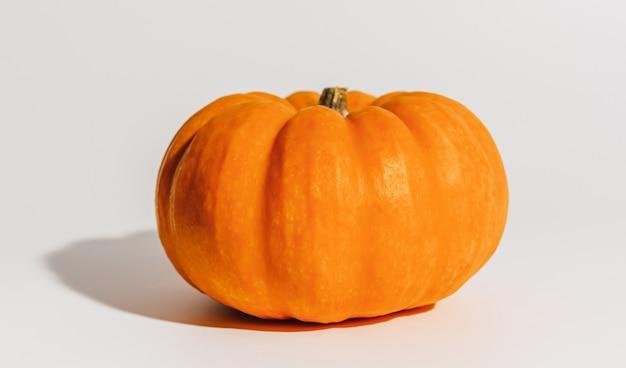 Świeża dojrzała pomarańczowa dynia na białym tle. miejsce na makiety tekstowe koncepcja halloween