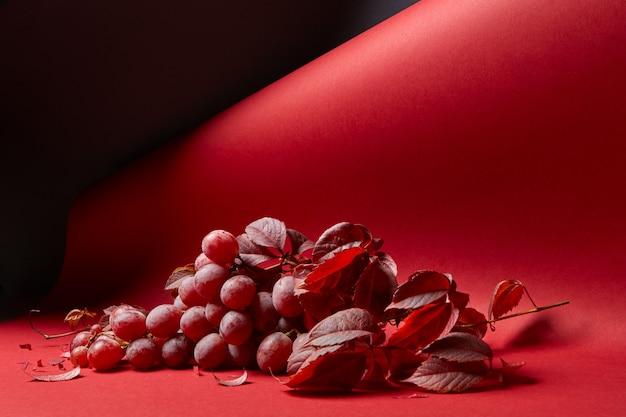 Świeża kiść czerwonych winogron z liśćmi