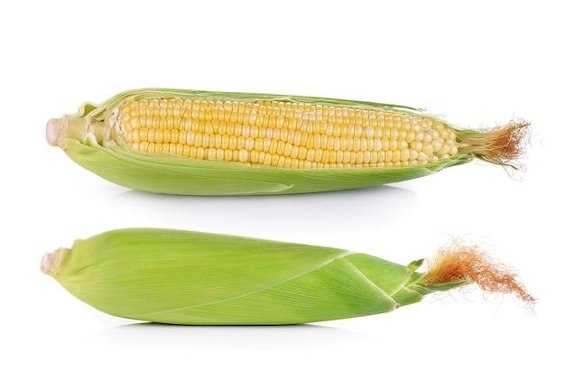 Świeża kukurydza na białym tle