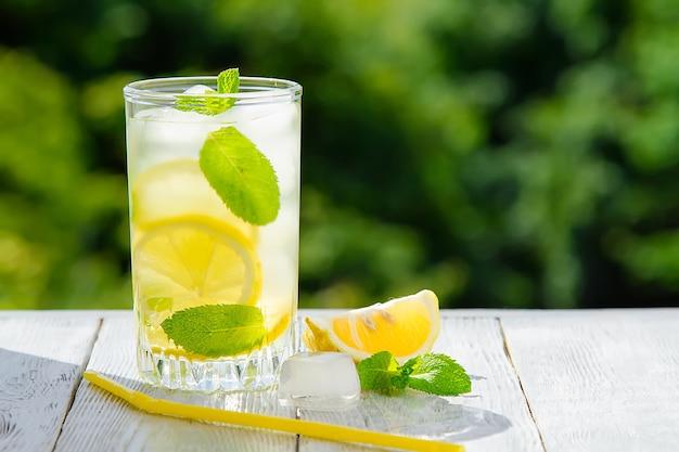 Świeża lemoniada cytrusowa w ogrodzie