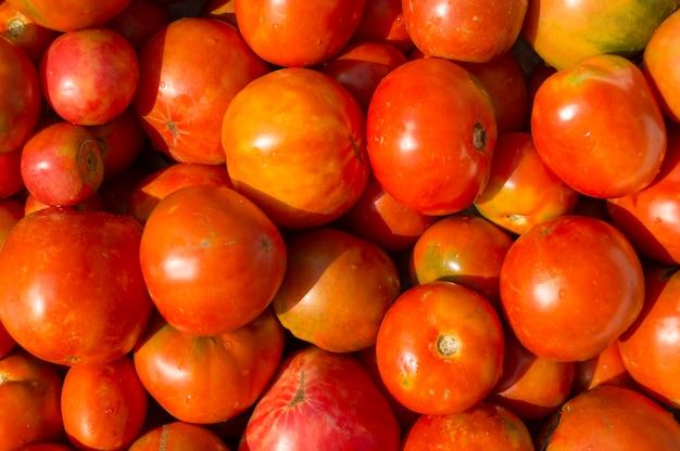 Świeża organicznie pomidoru tła tekstura
