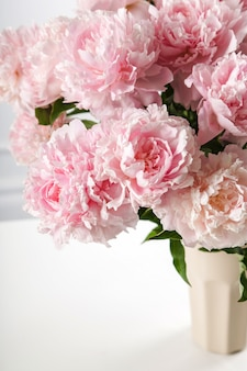 Świeża piękna peonia kwitnie w wazie