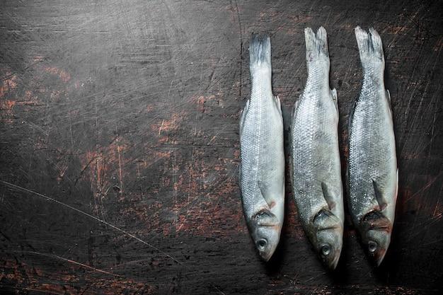 Świeża ryba surowego labraksa na ciemnym rustykalnym stole