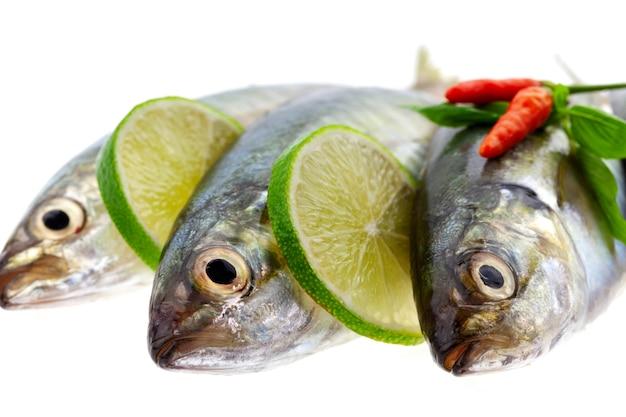 Świeża ryba z cytryną i liściem odizolowywającymi na białym tle