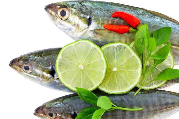 Świeża ryba z cytryną i liściem odizolowywającymi na bielu, gotuje