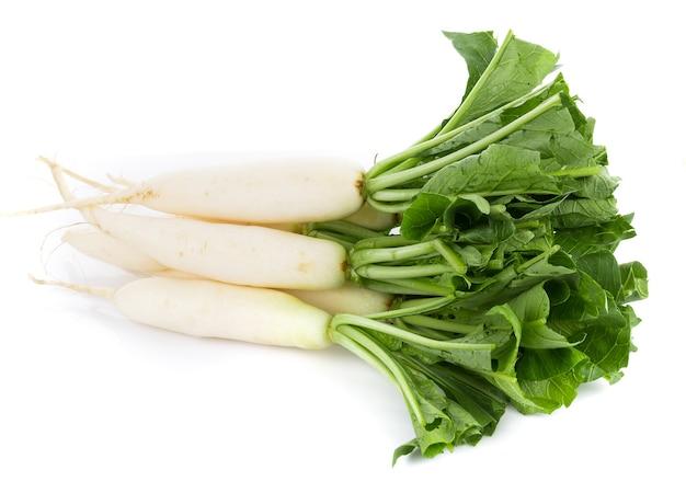 Świeża rzodkiew biała na białym tle na białej powierzchni