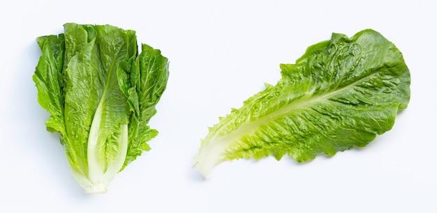 Świeża sałata rzymska na białym tle