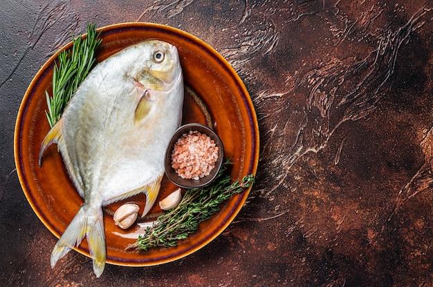 Świeża surowa ryba z florydy pompano na rustykalnym talerzu