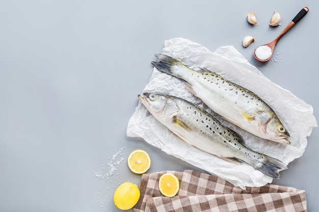 Świeża surowa ryba z pikantność, cytryna, sól na szarym tle