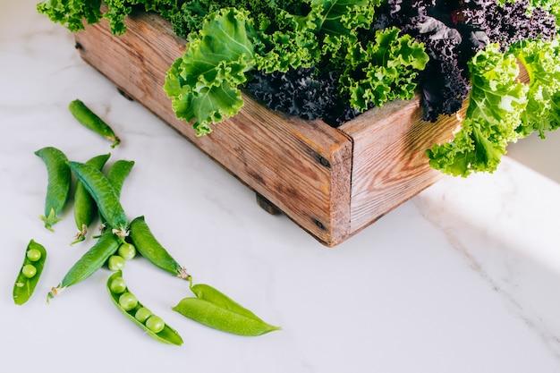 Świeża zieleń, purpurowy jarmuż i groch w drewnianym pudełku na marmurze, kopii przestrzeń