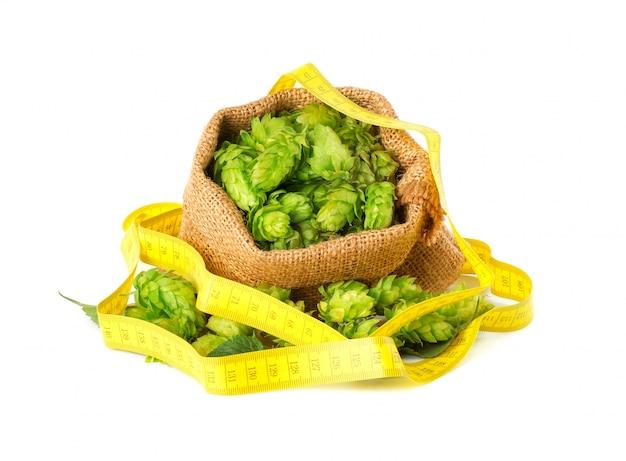 Świeża zieleni gałąź chmiel i żółta pomiarowa taśma, odosobniony diety pojęcie.