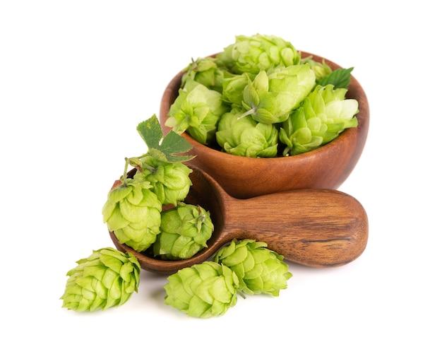 Świeża zielona gałąź chmielu w drewnianej misce i łyżce na białym tle szyszki chmielowe z liściem