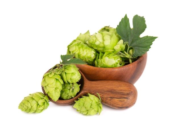 Świeża zielona gałąź chmielu w drewnianej misce i łyżce na białym tle szyszki chmielu z liściem