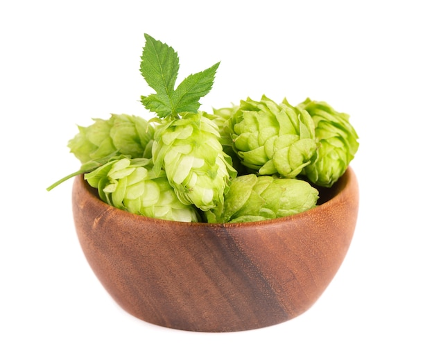 Świeża zielona gałąź chmielu w drewnianej misce na białym tle szyszki chmielowe z liśćmi organicznymi