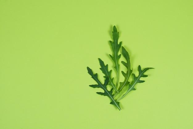 Świeża zielona rukola opuszcza na zielonym tle, mieszkanie nieatutowy, miejsce dla teksta