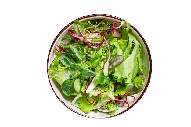 Świeża zielona sałata mix sałat soczysta przekąska z mikrogreenów gotowa do spożycia diety keto lub paleo