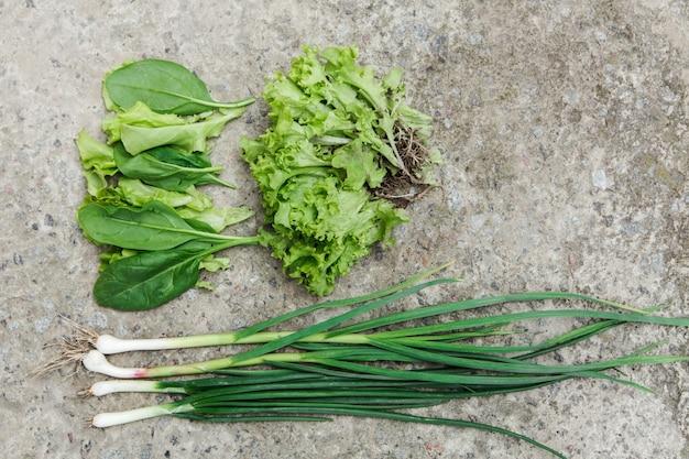Świeża zielona sałata, szpinak, zielona cebula z ogrodowego łóżka na kamiennej ścianie. ekologiczna żywność i koncepcja zdrowego stylu życia. widok z góry