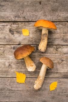 Świeże borowiki szlachetne z pęczkiem świerków i szyszkami na rustykalnym drewnianym stole
