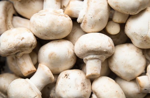 Świeże całe grzyby