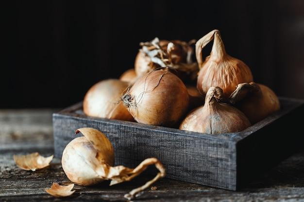 Świeże cebule na nieociosanym drewnianym tle