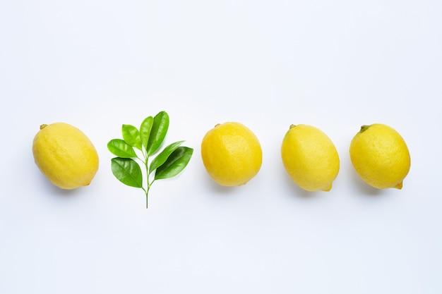 Świeże cytryny z zielonymi liśćmi na białym tle.