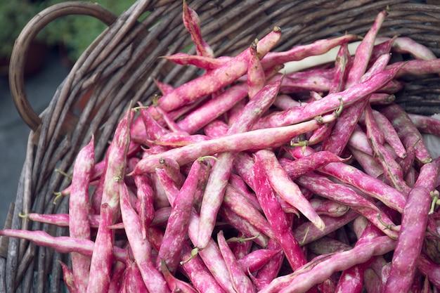 Świeże czerwone fasole na nieociosanym koszu przy rolnikami wprowadzać na rynek