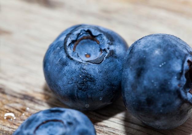 Świeże, dojrzałe borówki bogate w witaminy zebrane świeże i smaczne jagody świeże borówki