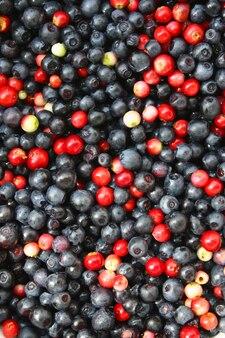 Świeże dojrzałe jagody i żurawiny. naturalne tło jagodowe.