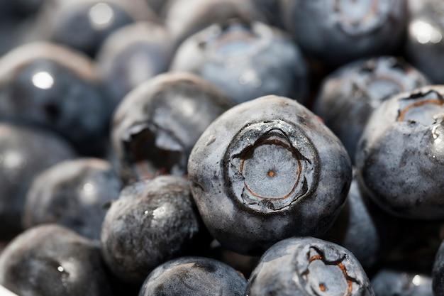 Świeże, dojrzałe jagody z witaminami zebrane świeże i smaczne jagody borówki