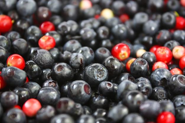 Świeże dojrzałe leśne jagody i jagody w tle