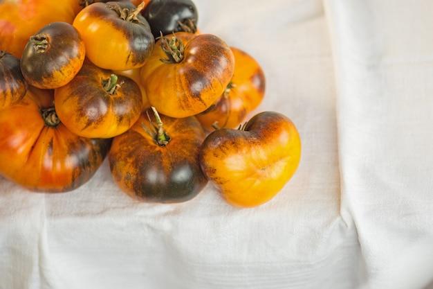 Świeże, dojrzałe pyszne brązowe żółte pomidory. tło ze świeżo zebranych czerwonych pomidorów dark galaxy.