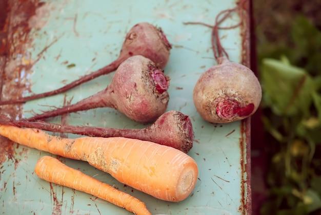 Świeże, dojrzałe warzywa na starej powierzchni metalu. marchewki i buraki.