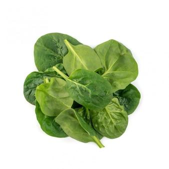 Świeże dziecko liście szpinaku izolowane. spinacia oleracea lub widok z góry zielonych warzyw liściastych