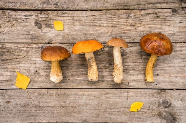 Świeże grzyby borowik szlachetny z kiść świerk i szyszki na rustykalnym stole woden. zdjęcie wysokiej jakości